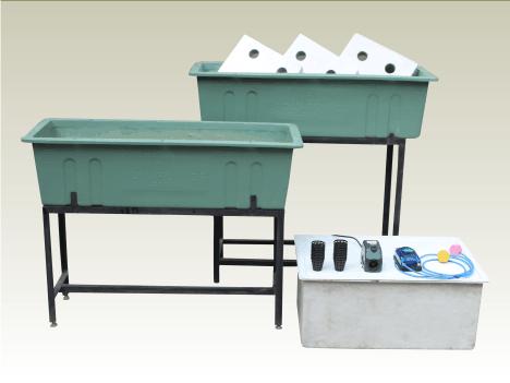 Hydroponics 3x raft system indiaaquaponics estore for Hydroponic raft system design