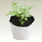 ldpe_grow_bags